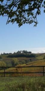 Castelgaro Fall 2012